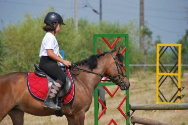 Escola de Equitação